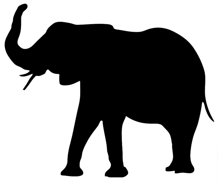 Skin clipart elephant. Png free images toppng