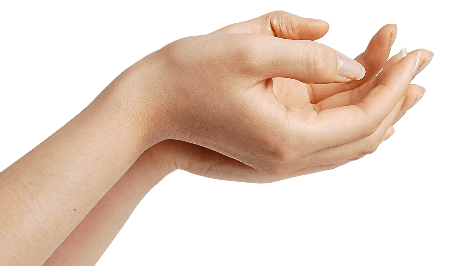 Skin clipart opened hand. Hands waiting transparent png