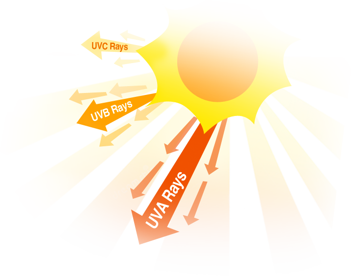 Pin on protect yourself. Skin clipart uv radiation