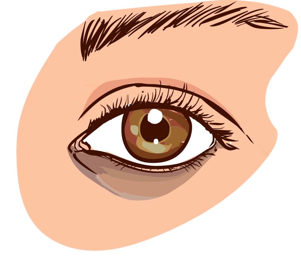 Skin clipart wrinkle.  organic natural eye