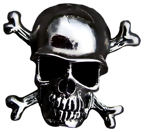 Chrome with by paw. Skull helmet png