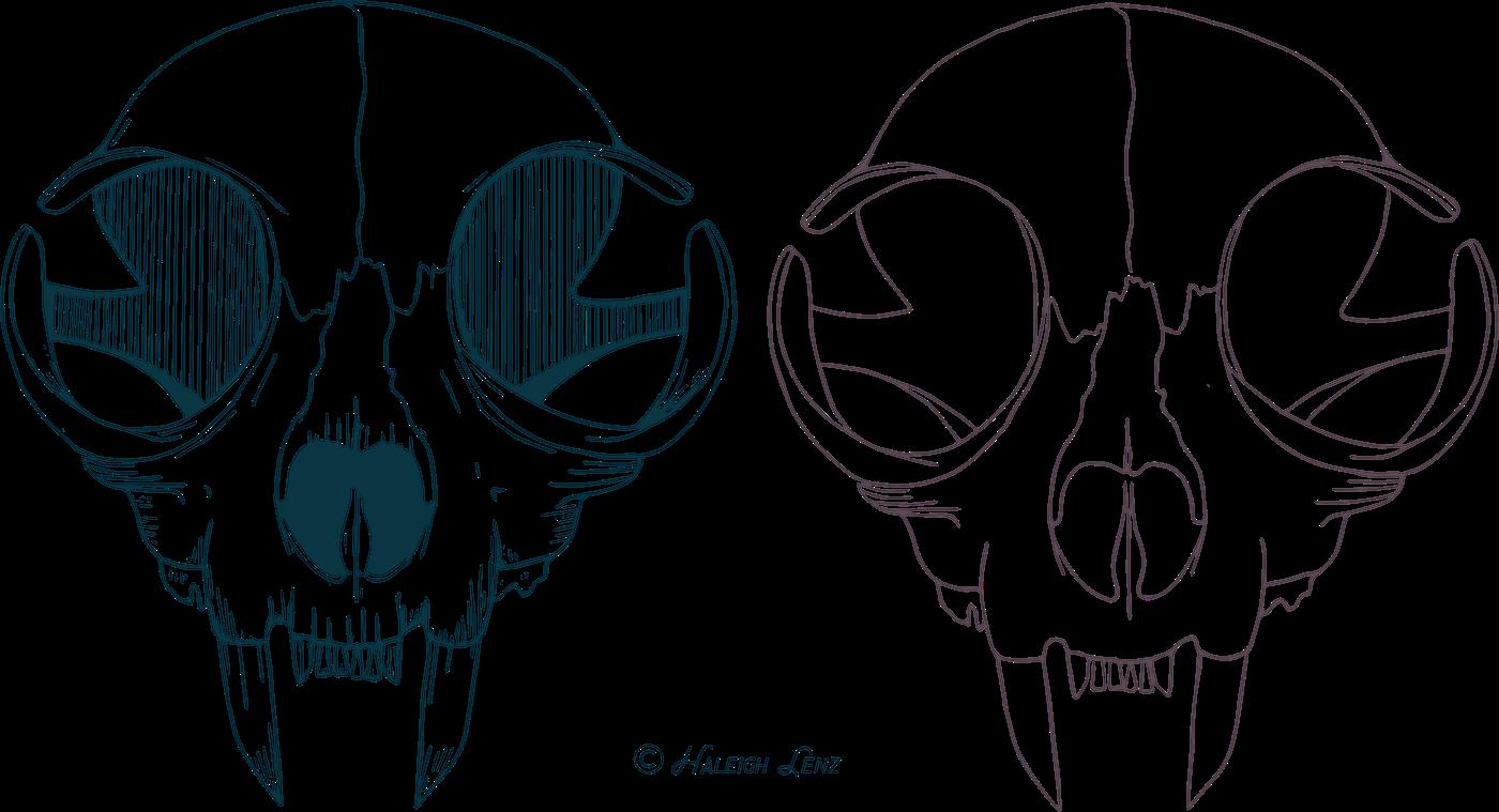 Skull vector png. Cat illustration on behance