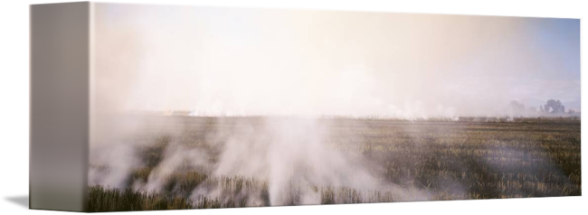 From burning fields by. Smoke rising png