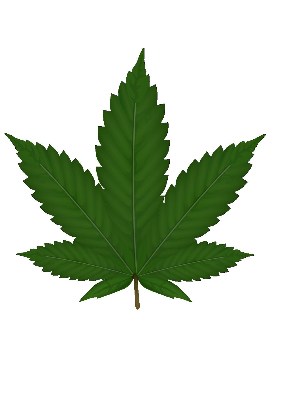 Smoke weed png. Cannabis image purepng free
