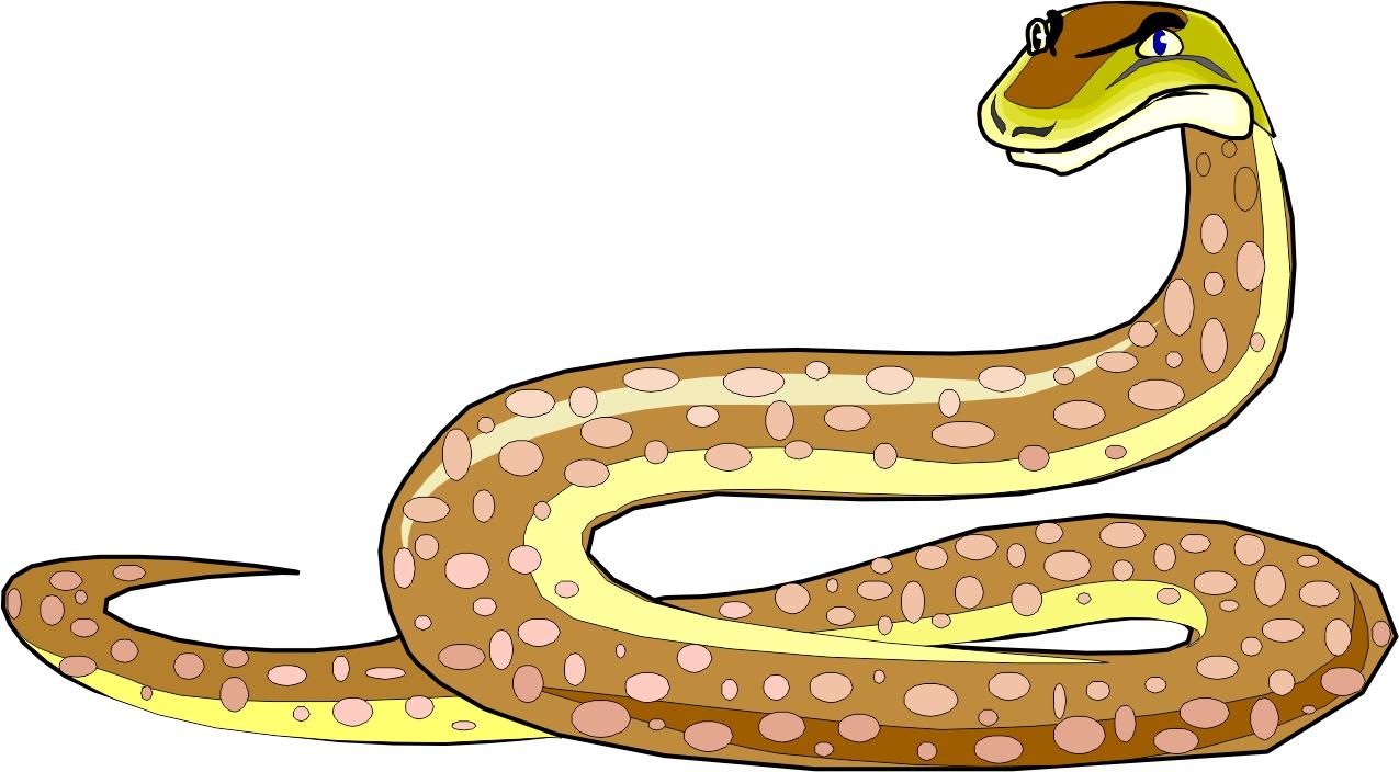 Station . Snake clipart ajgar