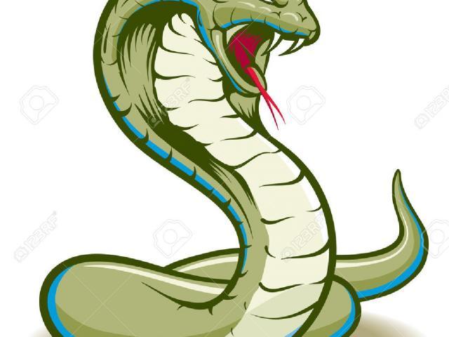 Snake clipart bitmap. Free download clip art