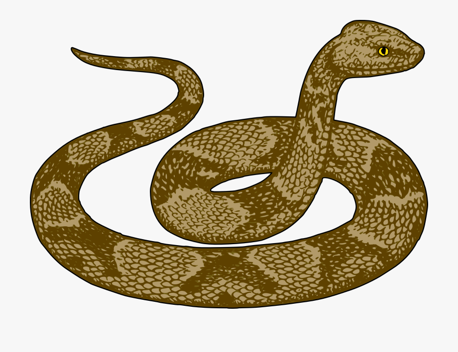 Free cute clip art. Snake clipart brown snake