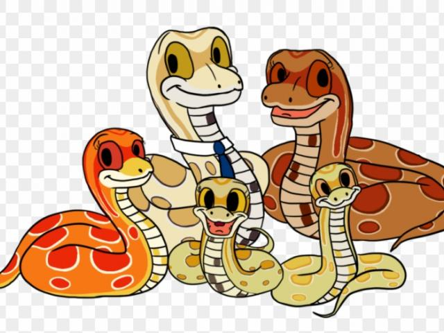 Snake clipart family. Free download clip art