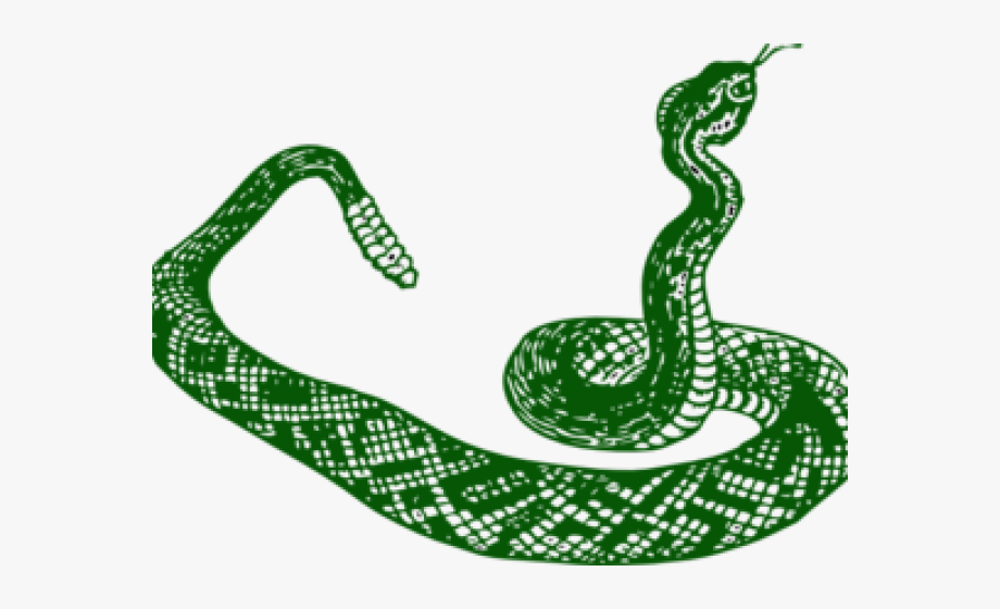 Snake clipart green snake. Smooth star rattlesnake black