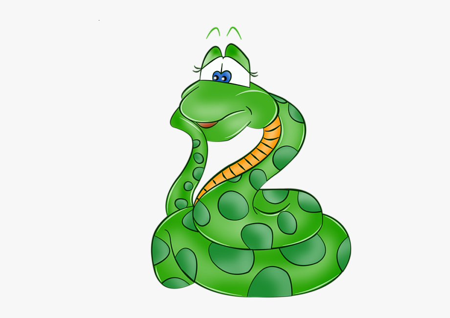 Snake clipart jungle animal. Cartoon zoo safari rainforest