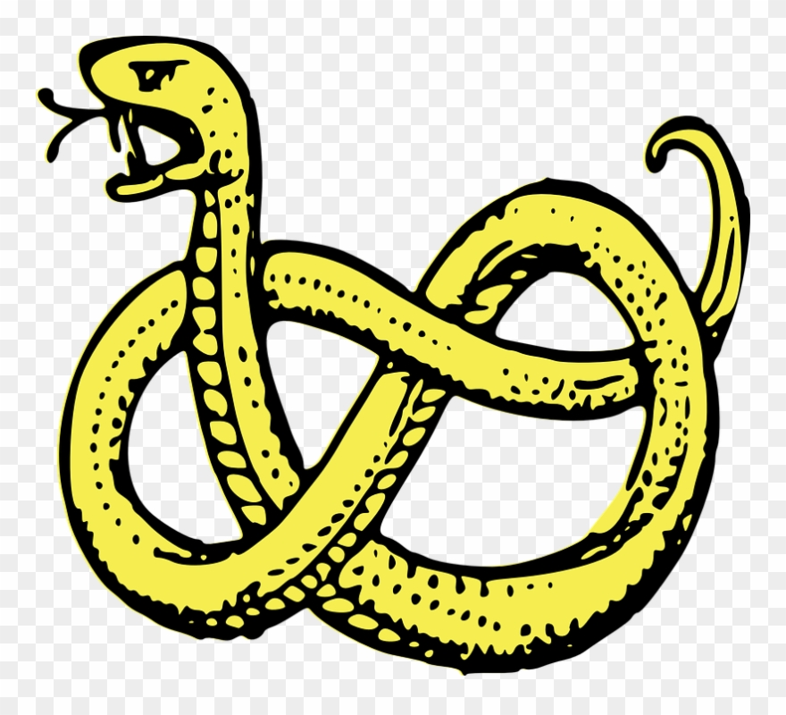 Snake clipart serpent. Coiled predator isolated drawing