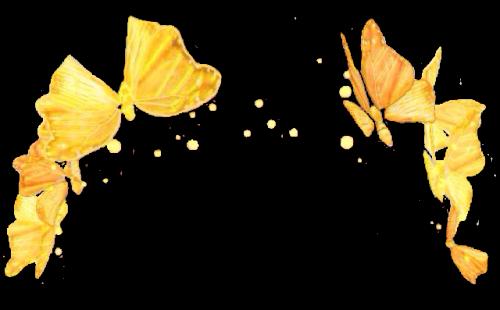 Snapchat flower crown png. Transparent mart