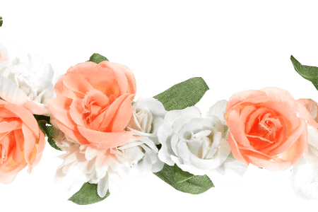 Snapchat flower crown png. Beautiful flowers various pictures