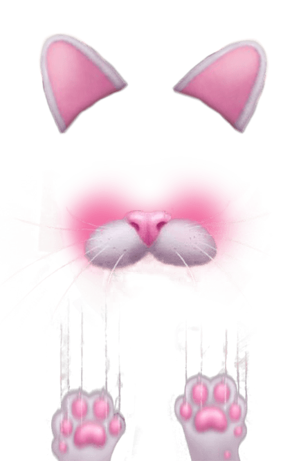 Filter transparent stickpng kitten. Snapchat hearts png