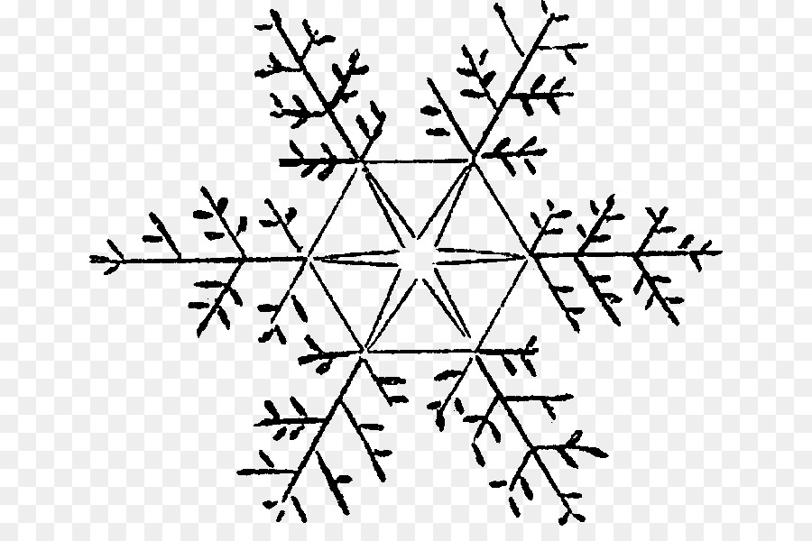 Cartoon white . Snowflake clipart drawing