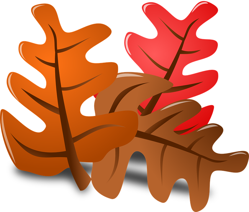 Collection of autumn country. Softball clipart thanksgiving