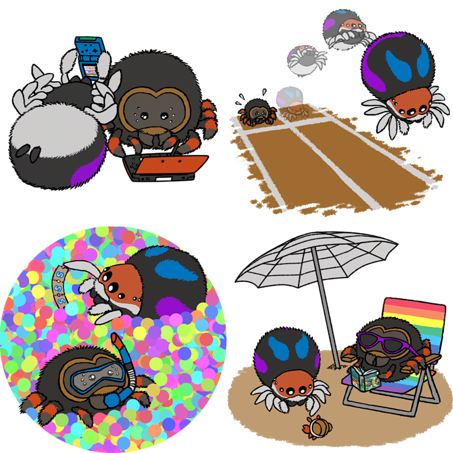 Spider clipart jumping spider. Squishable spiders by racieb