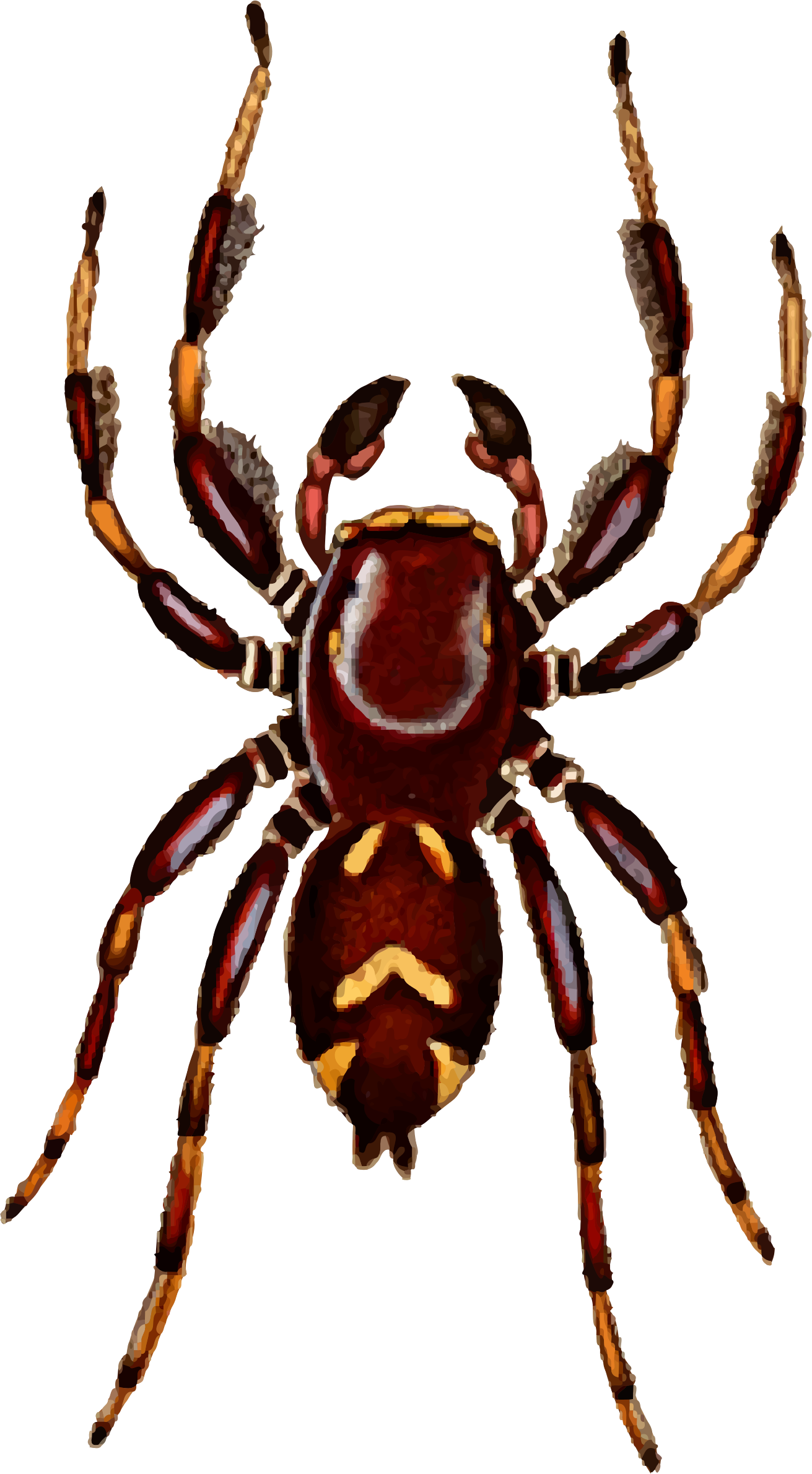 Regal big image png. Spider clipart jumping spider