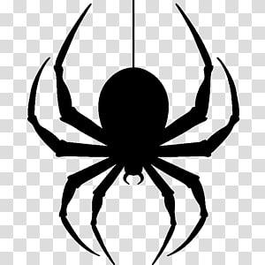 spider clipart transparent background