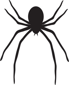 Clip art with panda. Spider clipart transparent background