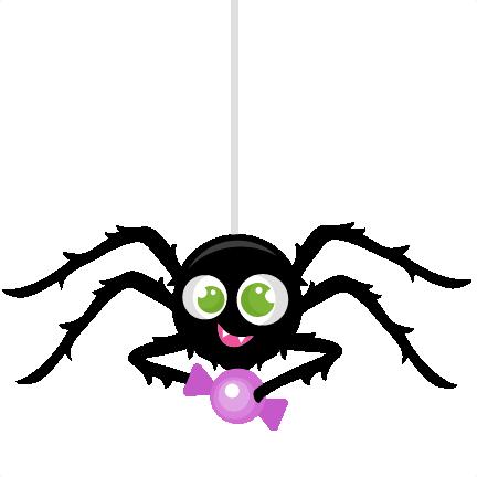 Spider clipart transparent background. Png images free download
