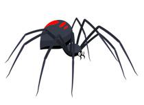 X free clip art. Spider clipart water spider