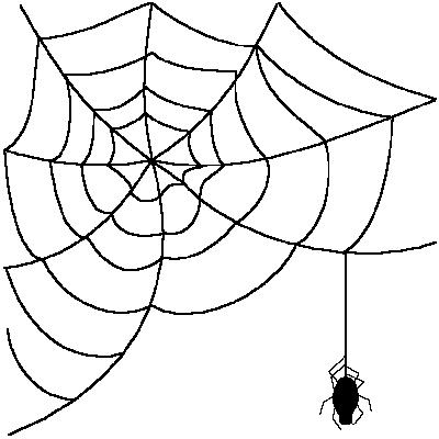 Spider web . Spiderweb clipart