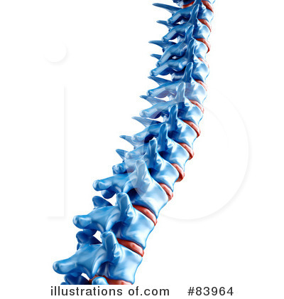Illustration by mopic royaltyfree. Spine clipart