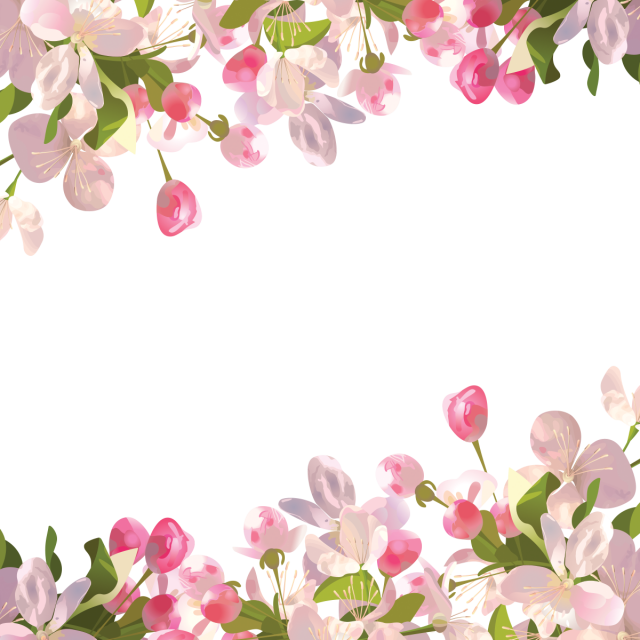 Realistic flowers background and. Spring flower png
