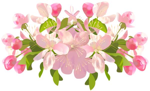 Transparent encode clipart to. Spring flower png