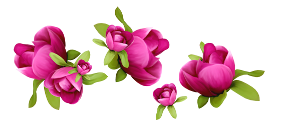 Spring flower png. Image flowers decoration clipart