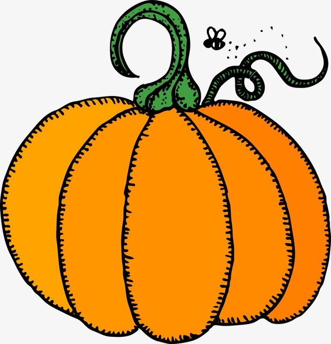 Squash clipart. Yellow pumpkin vegetables png
