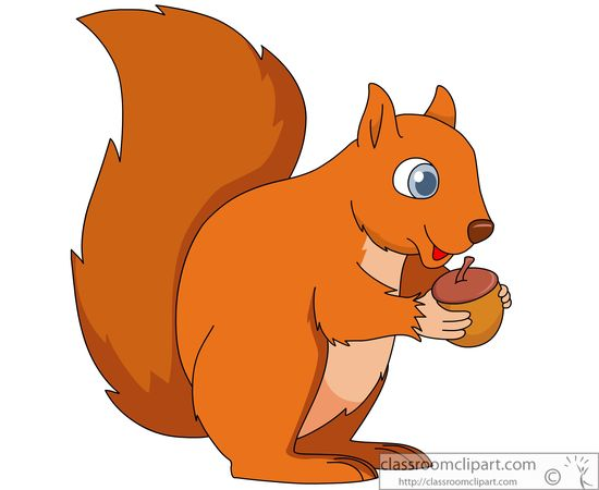 Free clip art pictures. Clipart squirrel