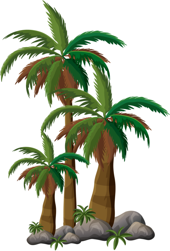 Stamp clipart palm tree. Arbre png pinterest digi