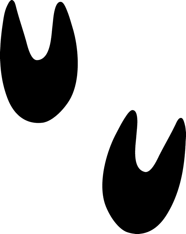 Stamp clipart symbol. Pig tracks rubber animal