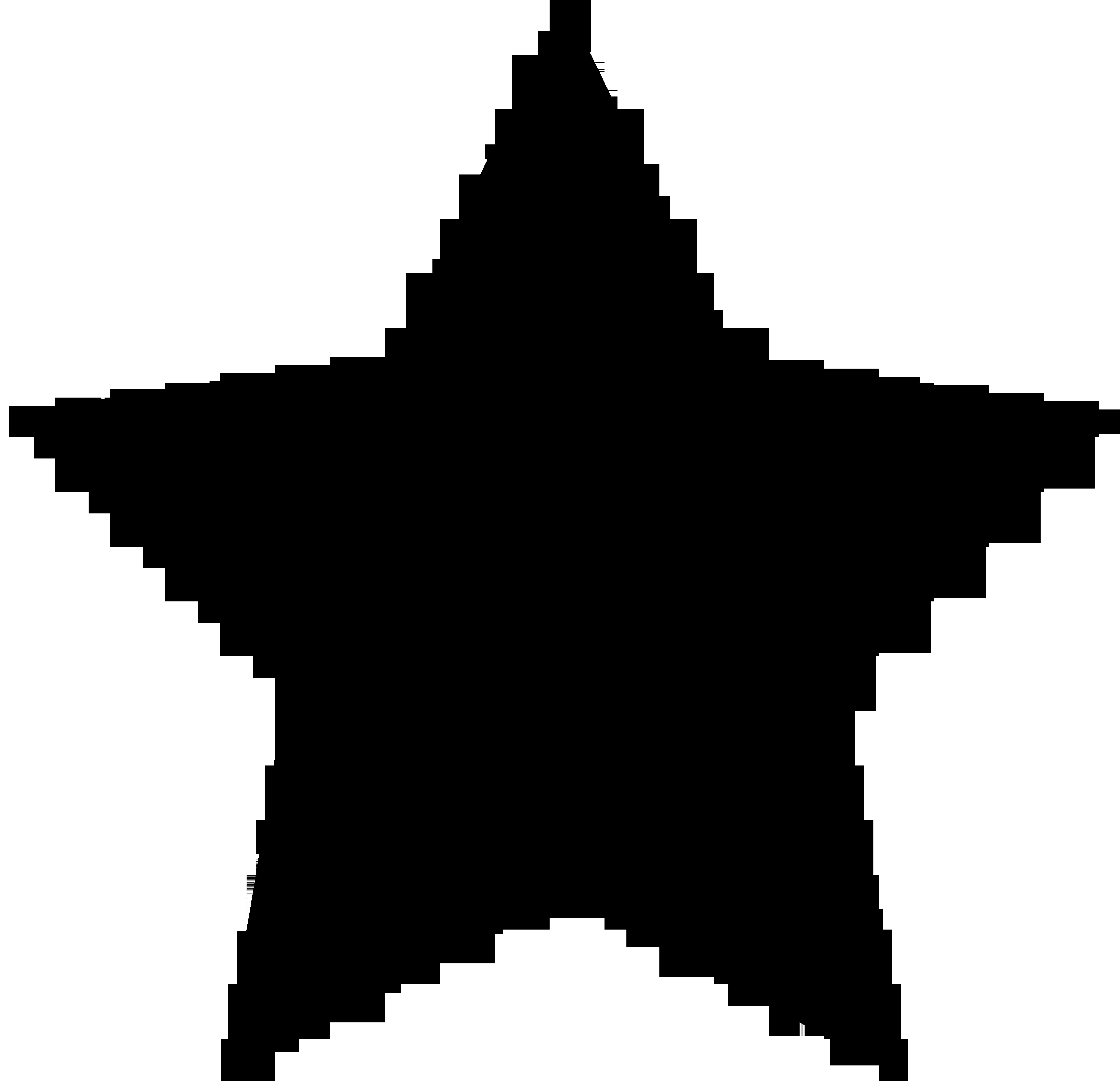 Big black star symbol. Ladybug clipart symmetrical
