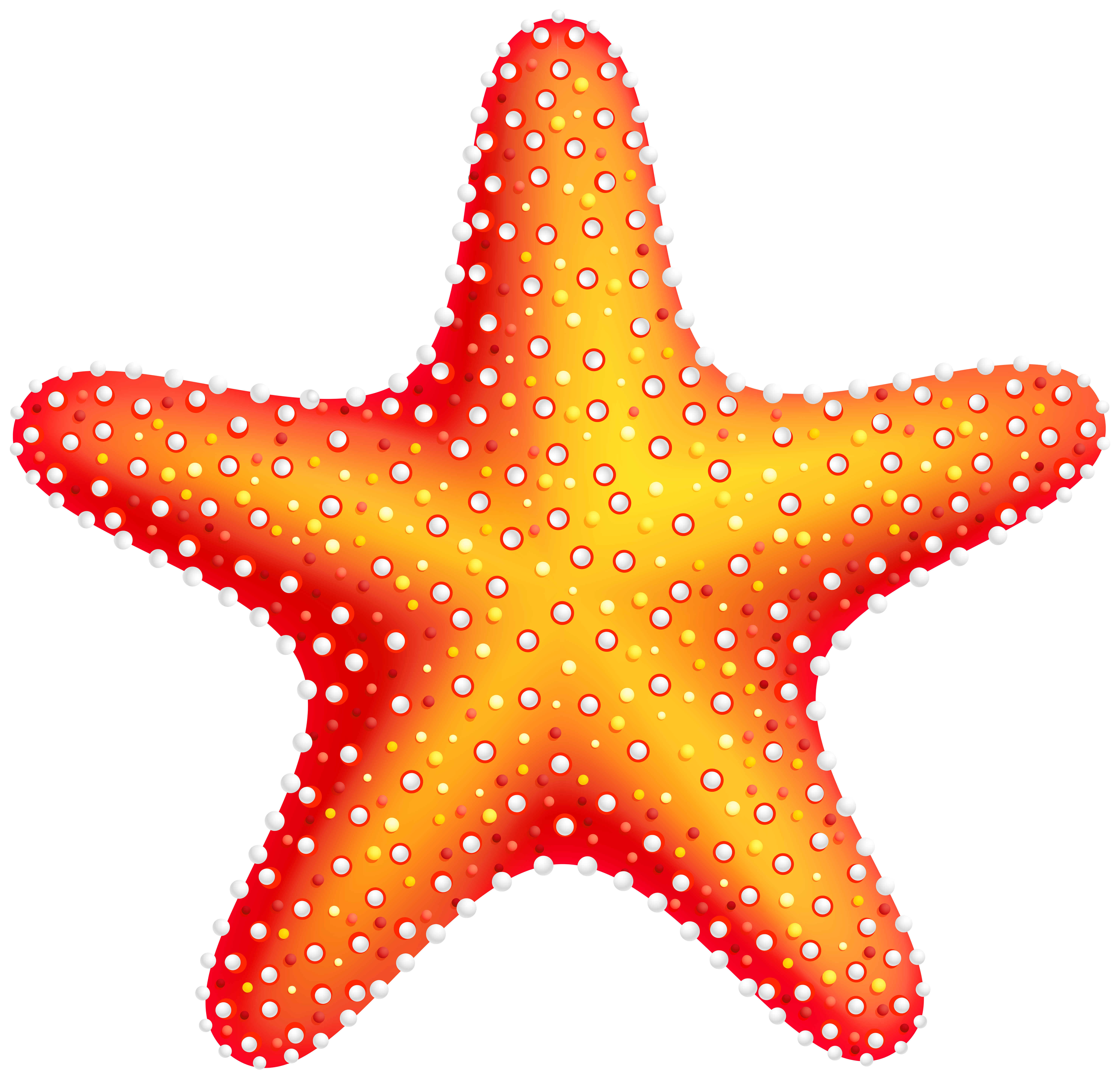 Shell clipart starfish wedding. Png clip art best