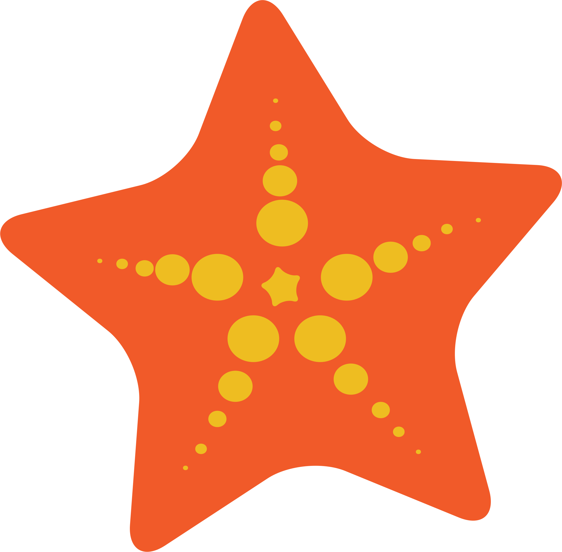 Big image png. Starfish clipart