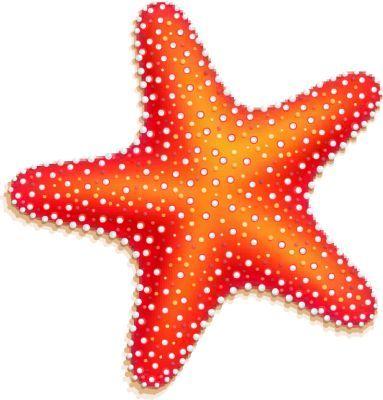 Cute tattoo designs google. Starfish clipart