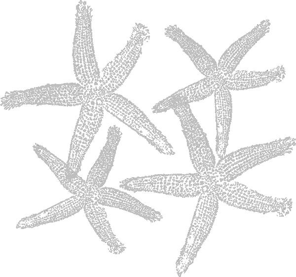 Starfish clipart grey. Prints clip art at