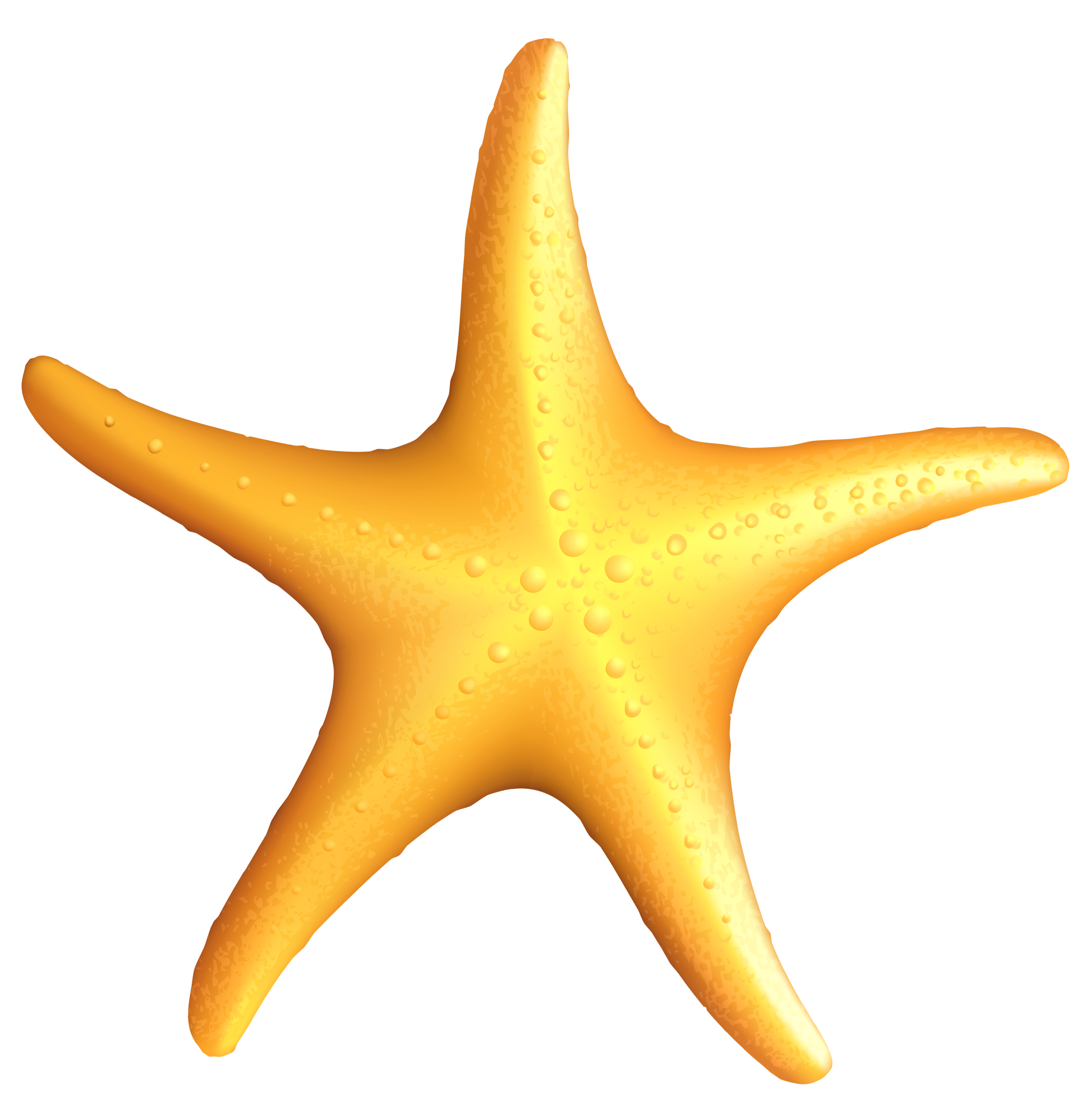 Starfish clipart grey. Png