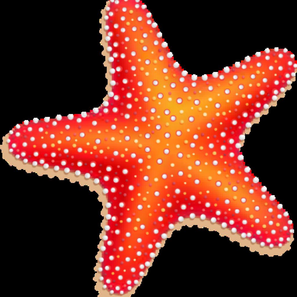 Starfish simple