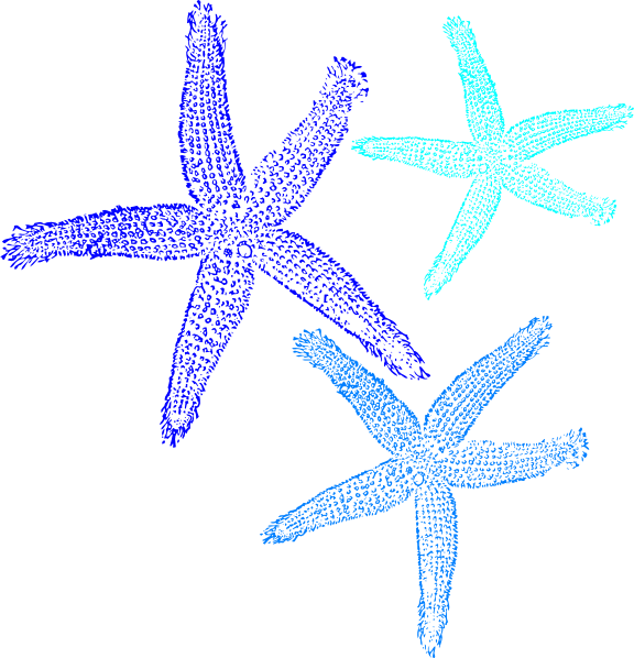 Starfish clipart symmetrical. Prints in blue clip
