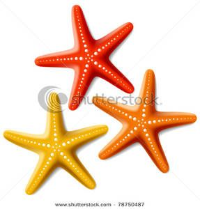 Drawing inspiration for creating. Starfish clipart three