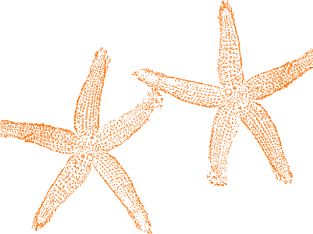 Free on dumielauxepices net. Starfish clipart wedding