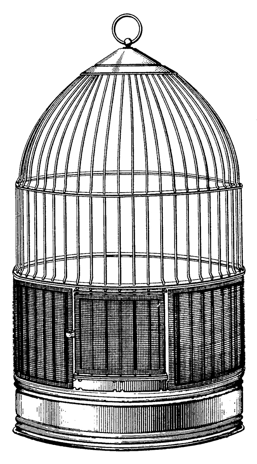 Steampunk clipart architecture. Bird cages google search