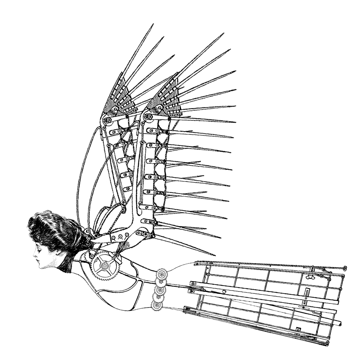 Wings google search pinterest. Steampunk clipart icarus