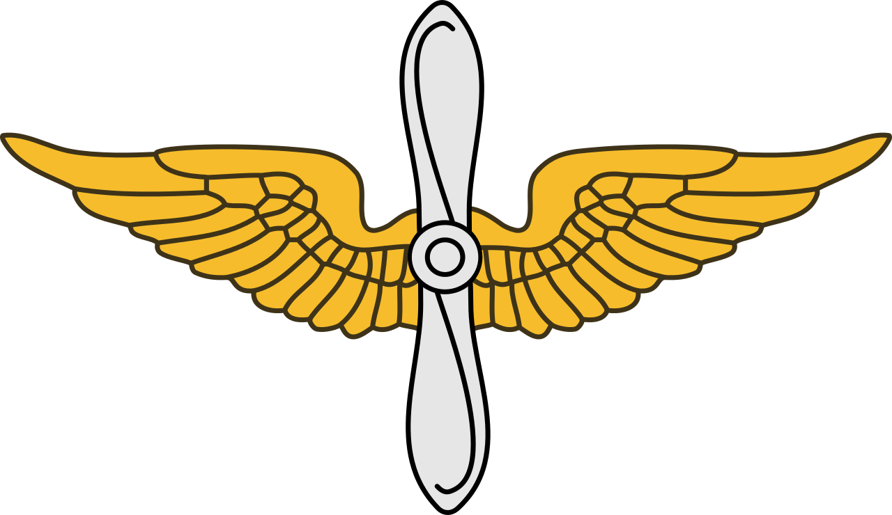 United states army aviation. Steampunk clipart military wing