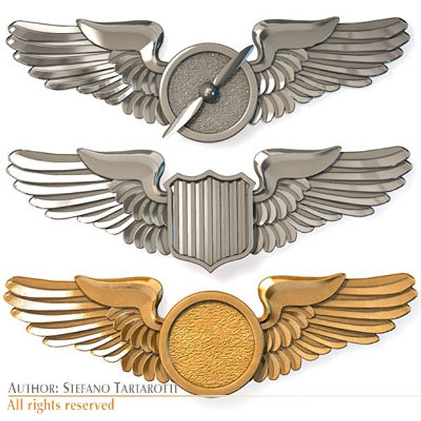 Steampunk clipart pilot wing. Aviation wings google search