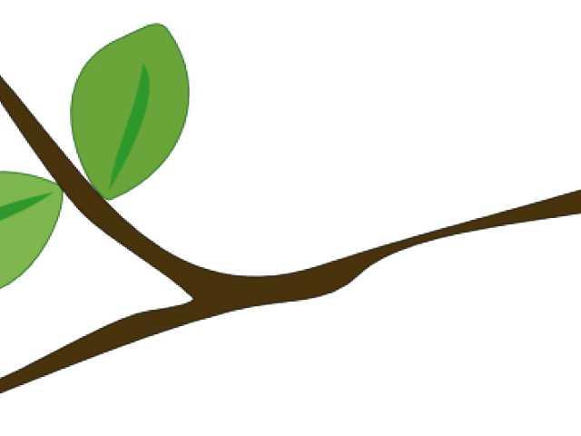 Stick clipart branch. Tree png free download